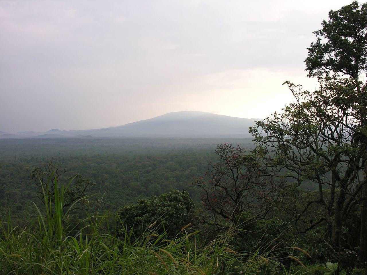 Crowd1 Congo